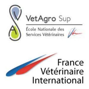 Logos FVI-ENSV-VetagroSup