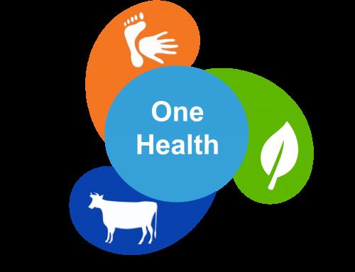 Groupe d'experts de haut niveau Une seule santé : appel à candidatures ouvert jusqu'au 16 avril.