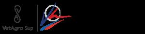 Logo ENSV-FVI