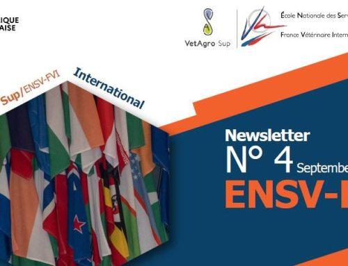 Newsletter ENSV-FVI