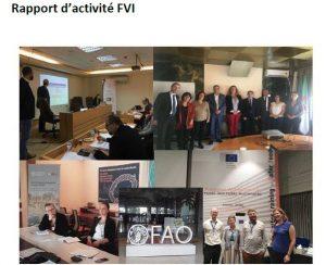 Couverture rapport d'activités 2019