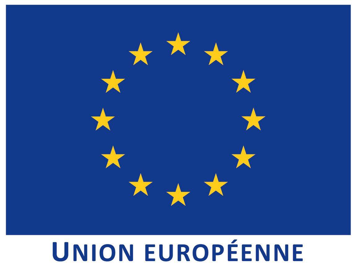 9 mai, journée de l'Europe : les fonctionnaires français participent largement aux programmes communautaires à dimension sanitaire